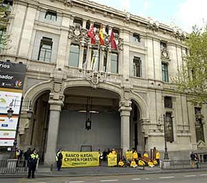 Activistas de Greenpeace contra la madera ilegal